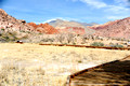 Calico Basin - Red Springs